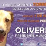 """Surge en Torreón """"Oliverio, el CANdidato Perrón"""", (Foto especial)."""