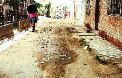 En las Calles del ejido El Fénix, se celebraba una danza en honor a San Isidro Labrador, hasta donde llegaron tres individuos vestidos de viejos de la danza y lanzaron impactos contra los asistentes logrando herir de muerte a Carlos Alberto Carrillo de 17 años quien perdiera la vida momentos después.