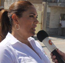 Diputada Federal Flor Renteria Medina